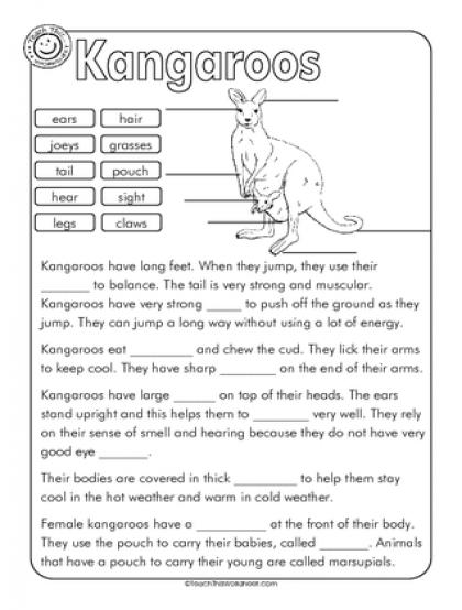 Kangaroo Label and Cloze Education Pinterest