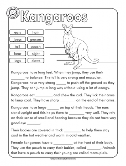 Kangaroo Label and Cloze | Education | Cloze activity ...
