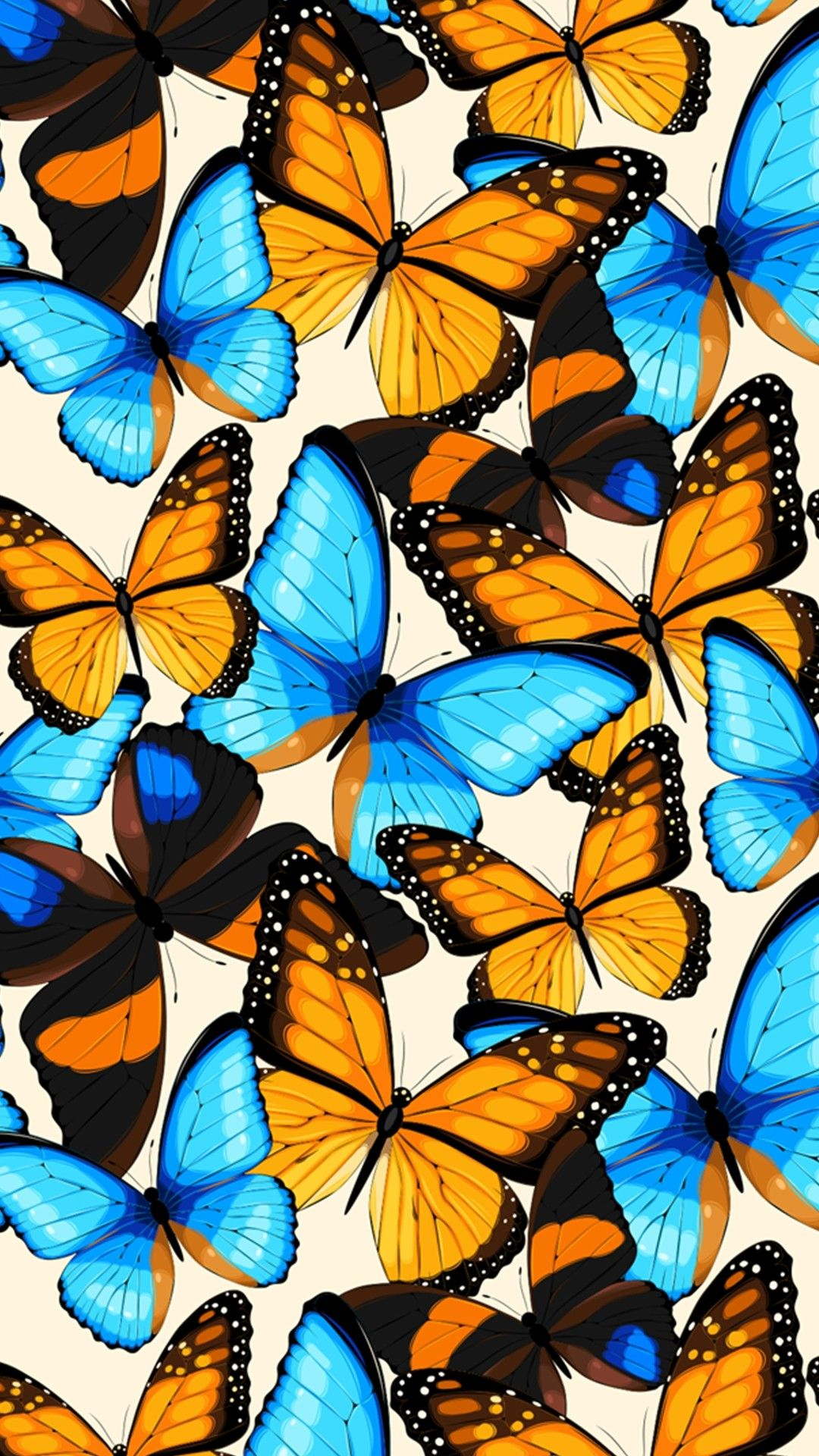 Blue and black butterfly in close up photography. Good morning, beautiful. I miss you. | Butterfly wallpaper