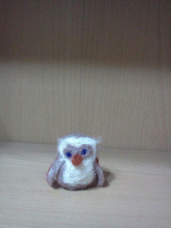 Baby owl Giogio