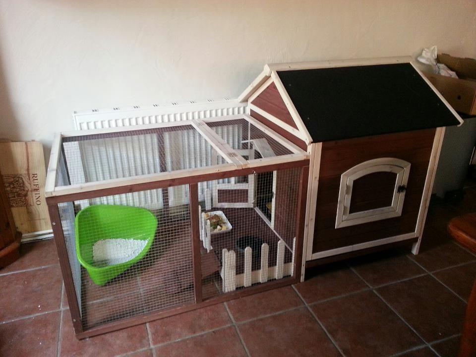 Skunk Indoor Enclosure Pets, Skunk, Possum