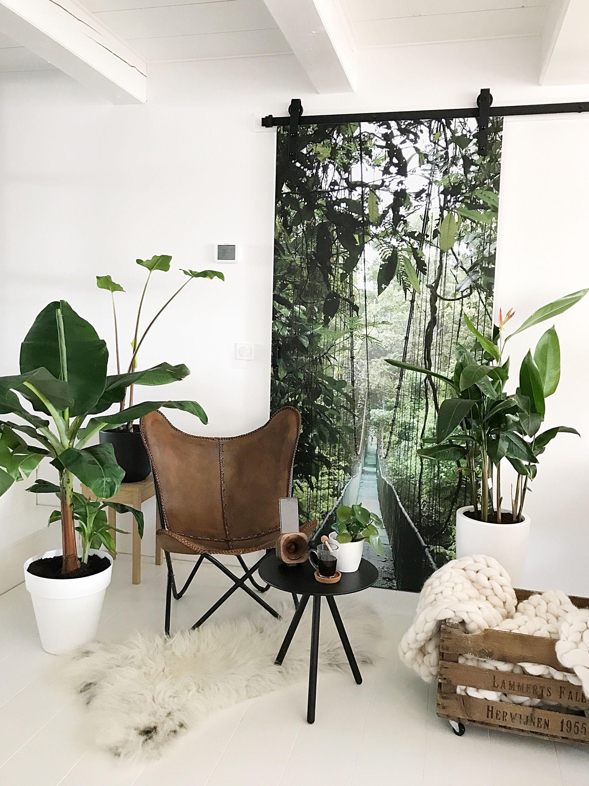 inside plants decoration - 750×1000