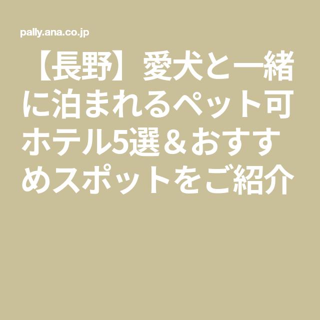 長野 愛犬と一緒に泊まれるペット可ホテル5選 おすすめスポットをご紹介 ペット スポット 岩岳