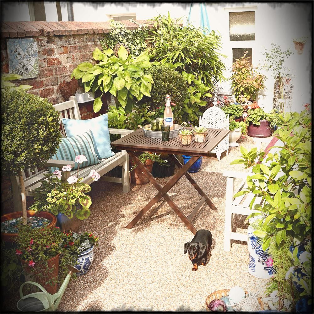 Amazing Small Garden Ideas On A Budget Uk Pictures No