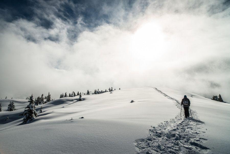 "Photo ""to the sky."" by Mattia Bonavida (@Mattia Bonavida) #500px http://500px.com/photo/59427402"