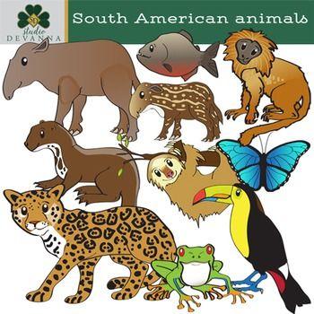 South American Animals Clip Art Amazon Wildlife American