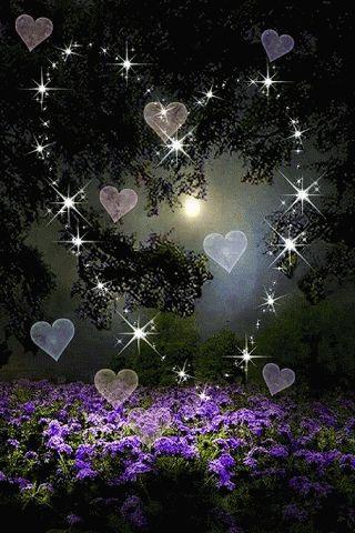 """FEELING BLESSED : Photo Amor """"el amor es el centro de nuestras vidas,recuperemos nuestra ternura asi viviremos mejor...."""