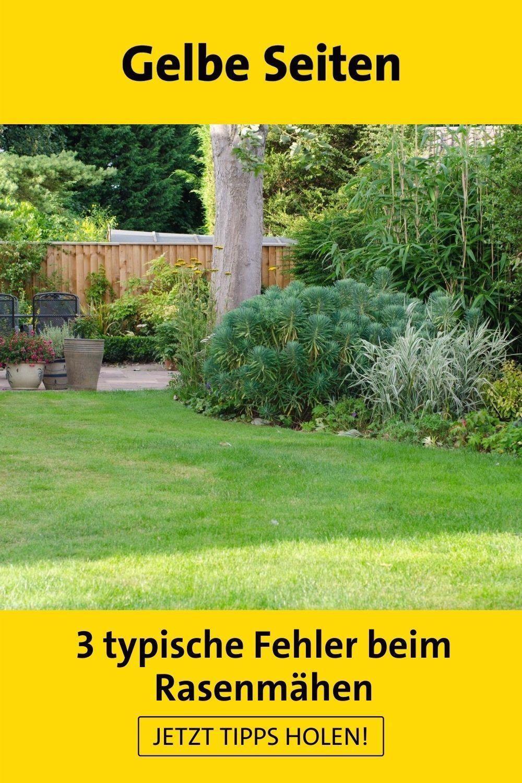 Fehler Beim Rasenmahen Diese 3 Sind Typisch In 2021 Gartenarbeit Gartenarbeit Fur Anfanger Gartengestaltung Ideen