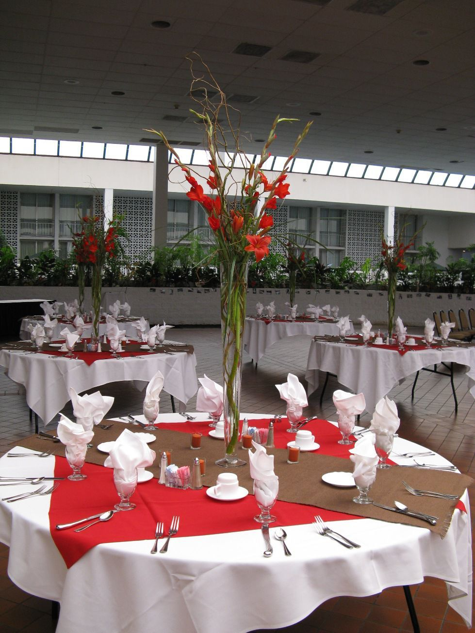Wedding decorations red  Striking Red Gladiolus  Wedding decor  Pinterest  Gladioli