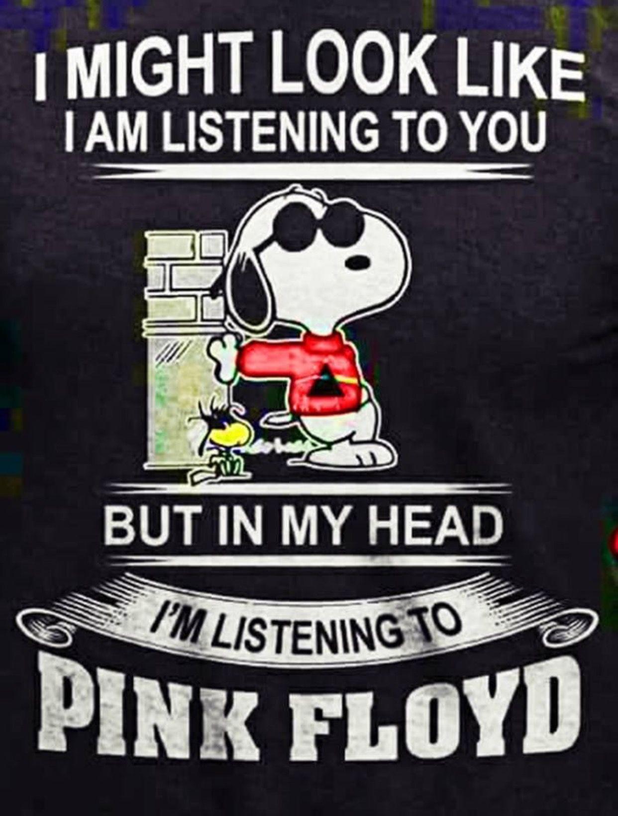 57bf83a5 Pink Floyd ~ (Snoopy) | ~ Pink Floyd ♡ ~ David Gilmour ~ | Pink ...