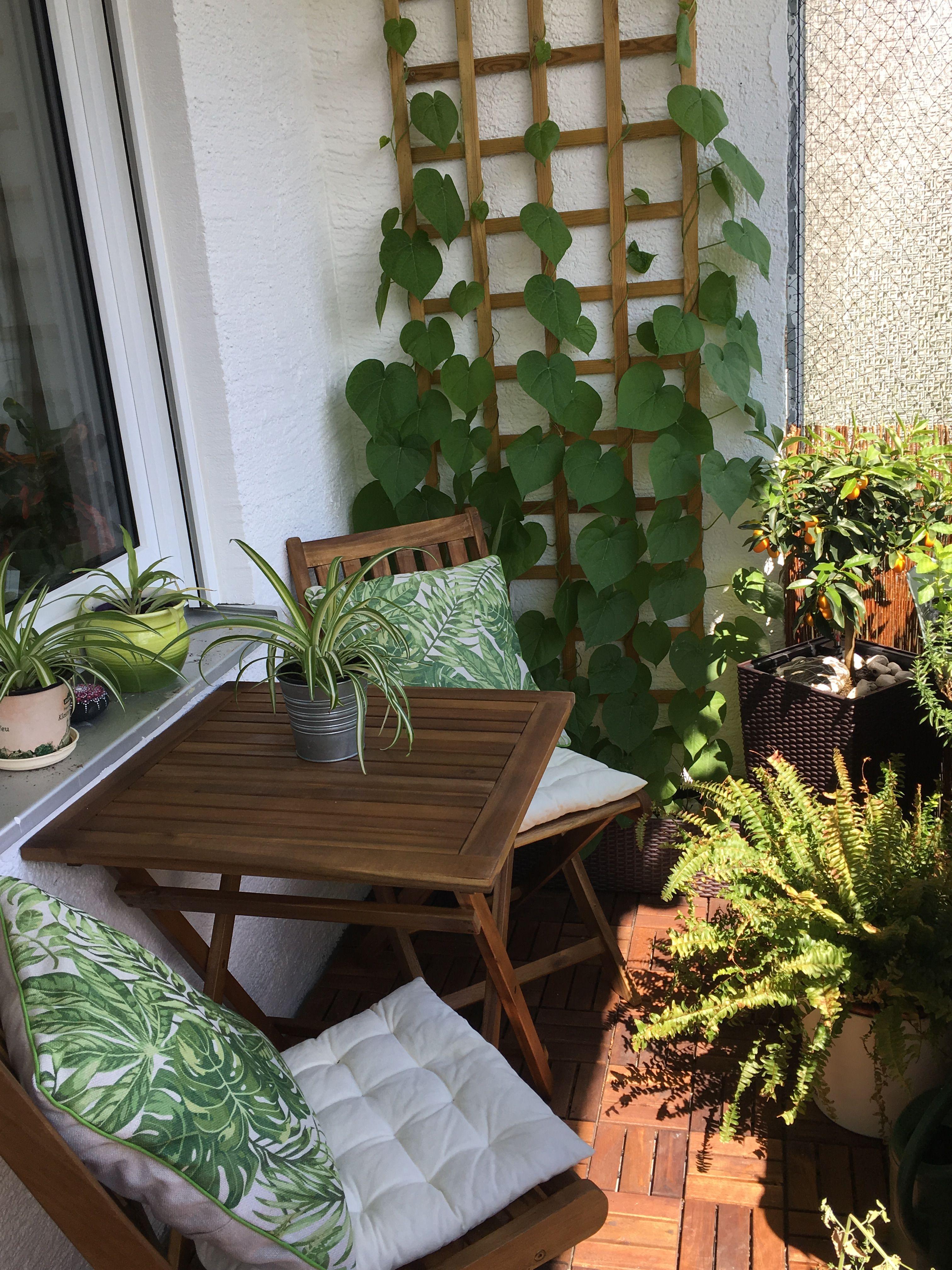 Green Balcony Apartment Decor Decoracion De Terrazas