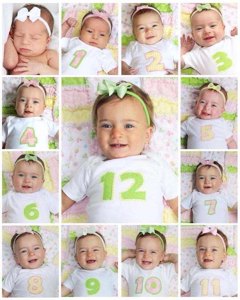 Newborn 12 months photo idea take a picture every month and make a photo collage