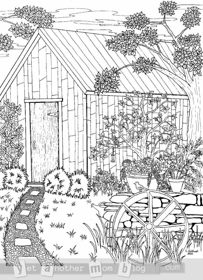 Coloring Page for Grown Ups: Garden Scene | Scene, Gardens