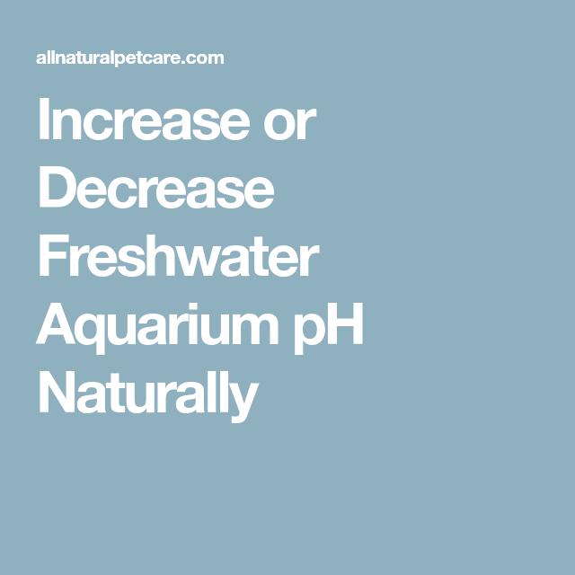 4 Ways To Lower Ph In Aquarium Naturally Aqua Movement Fish Tank Fresh Water Fish Tank Aquarium