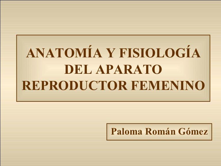 Material didáctico realizado para presentar la anatomía y fisiología ...