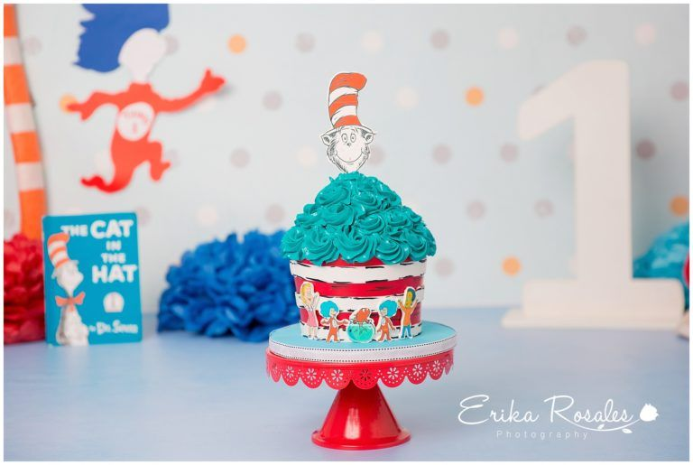 Dr Seuss The Cat In Hat Cake Smash First Birthday