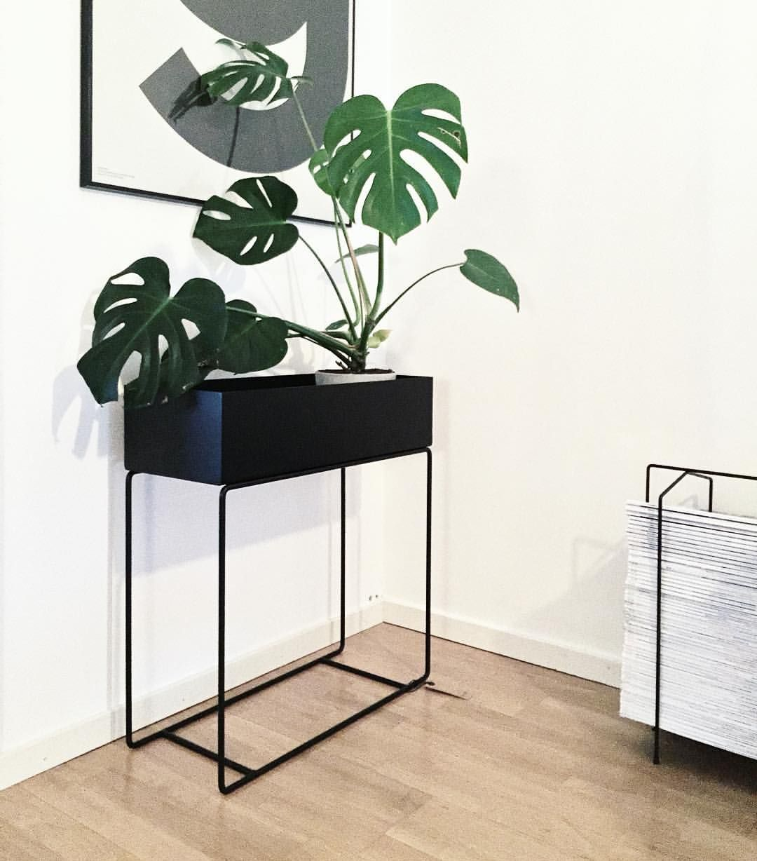 Plantbox Fr 229 N Ferm Living Plantbox Fermliving Monstera