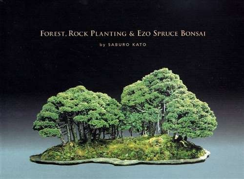 Peter Adams Bonsai Google Search Bonsai Forest Bonsai Tree Care Bonsai Tree