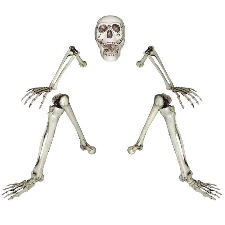 Lifesize Ground-Breaking Skeleton