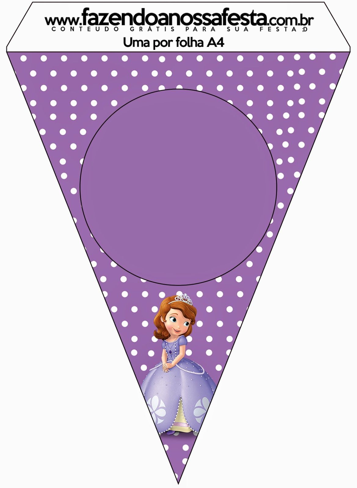 Disney Princess Sofia the First Bunting Kids Birthday Party Decoration Flags