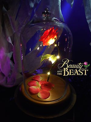 Beauty And The Beast Enchanted Rose Disney Fairy Tale Inspired Belle Gl Dome