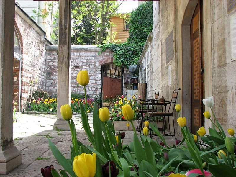 Wonderful Tulips Turkey National Flower Travel Agency Istanbul Flowers