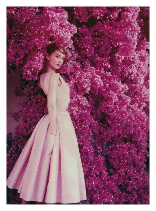 Audrey hepburn pink vintage dress pink flower wall perfection audrey hepburn pink vintage dress pink flower wall perfection mightylinksfo Choice Image