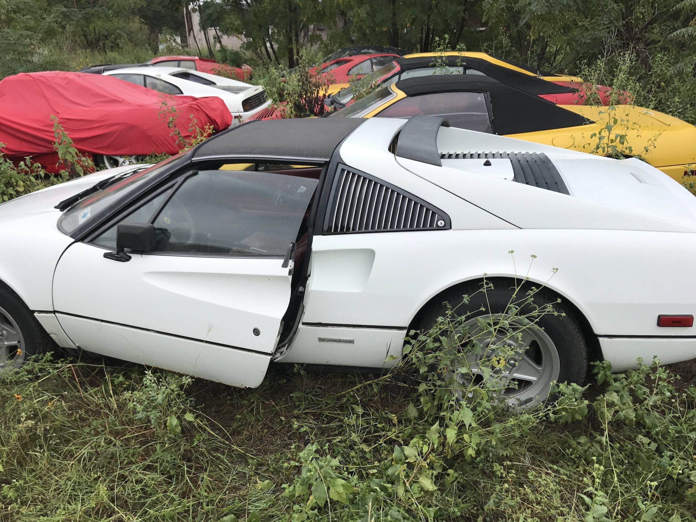 The Field Of Abandoned Ferraris And How They Got There Dr Wong Emporium Of Tings Web Magazine Abandoned Cars Barn Find Cars Junkyard Cars