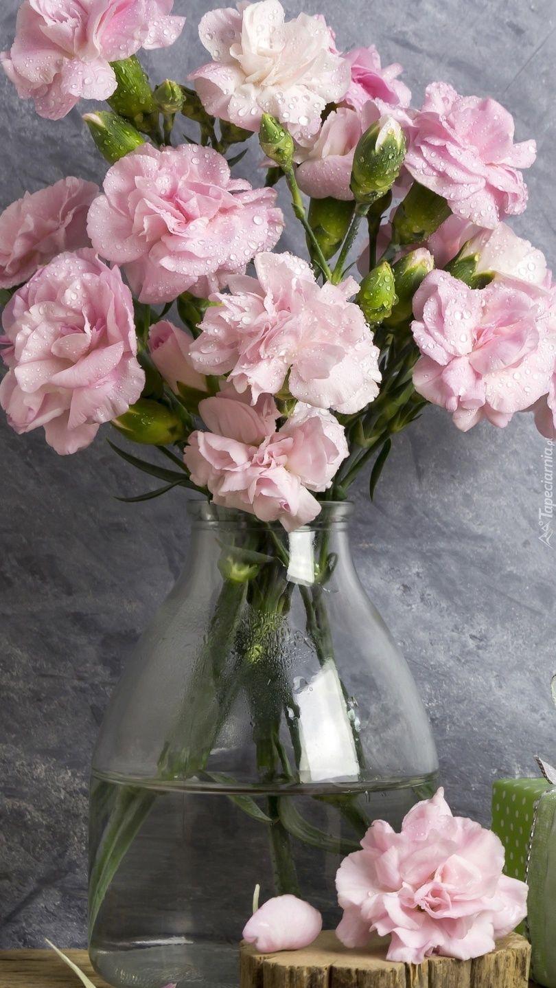 Gozdziki W Wazonie Tapeta Na Telefon Flowers Vase Glass Vase