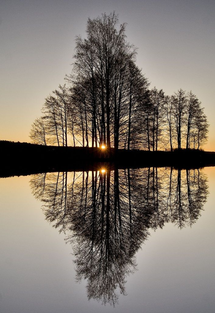 The Infinite Gallery Nature Photography Reflection Pictures Beautiful Nature