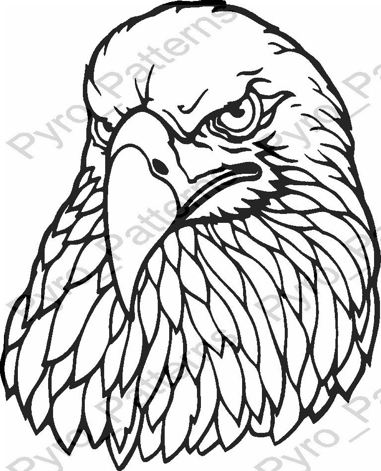 Eagle Head Bird Pyrography Wood burning Pattern Printable Stencil Instant Download Pyro_Patterns_birds_0718