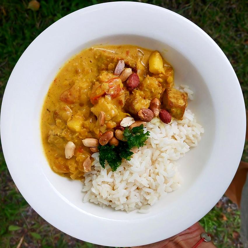 Life tastes good: Jalotofu-linssicurry riisillä