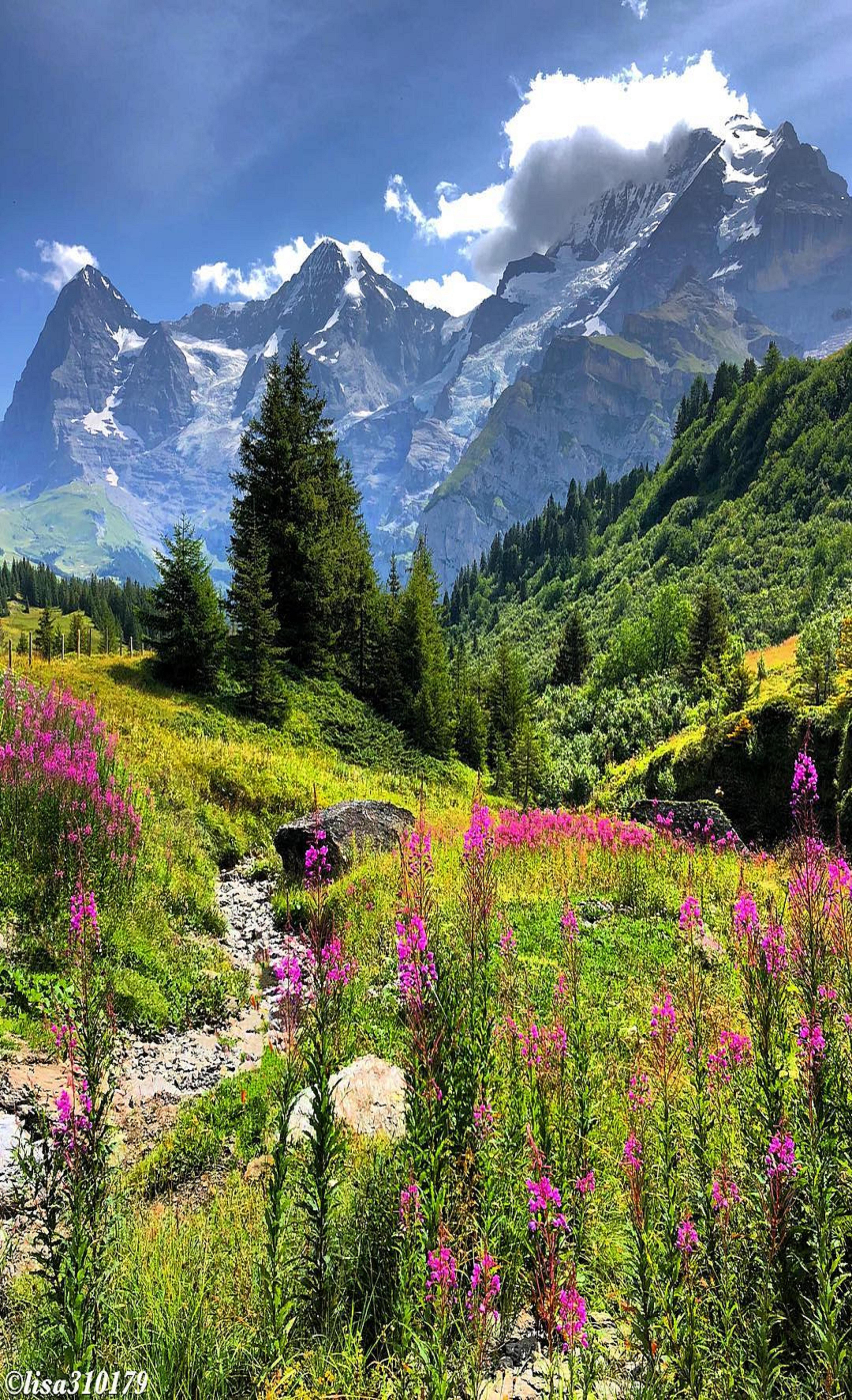 Pin By Ivanka Kostova On Nature Beautiful Landscapes Landscape Nature Photography