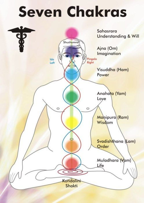 7 Chakras or energy centers.  By engaging or finding openness in these chakras, you release their associated energy.