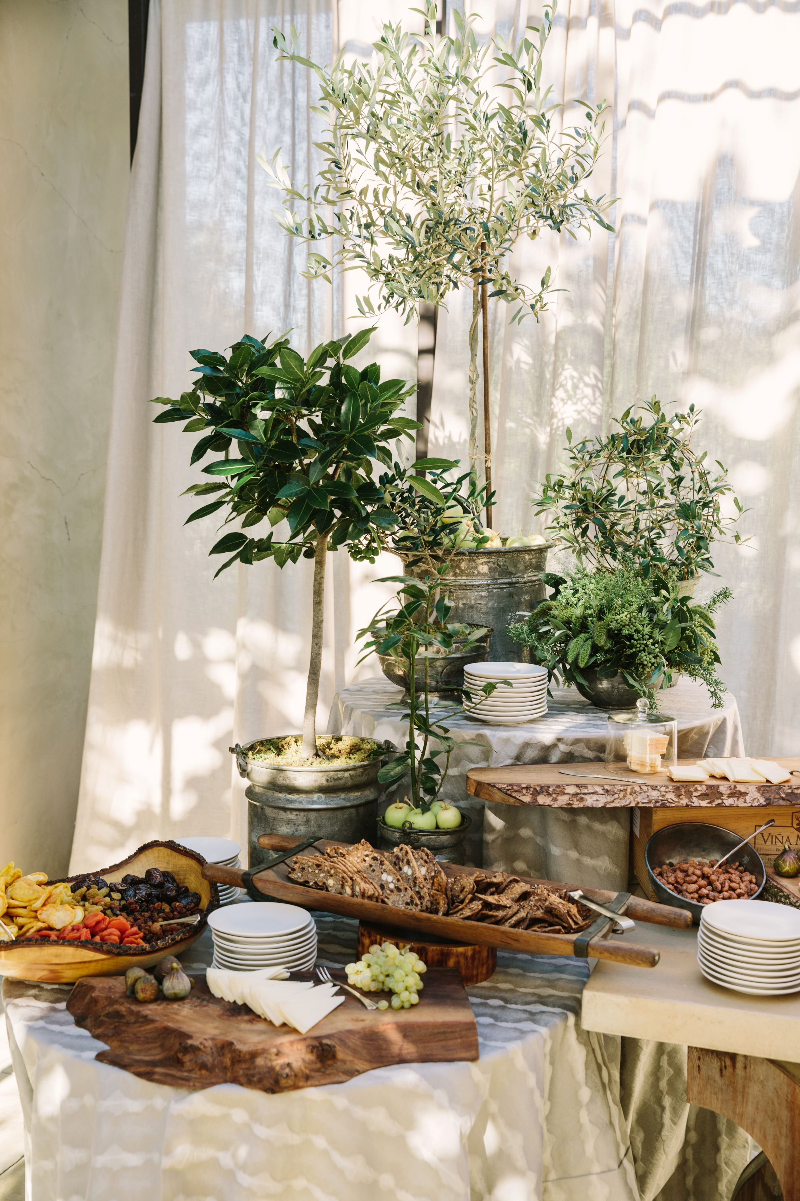 Rustic Charcuterie Display With Olive Trees Tree Themed Wedding Tree Wedding Centerpieces Tree Centrepiece Wedding