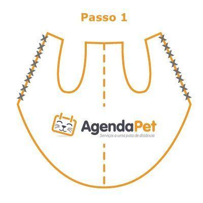 Roupas para cães: faça você mesmo, com instruções passo a passo e moldes do AgendaPet (página 2)
