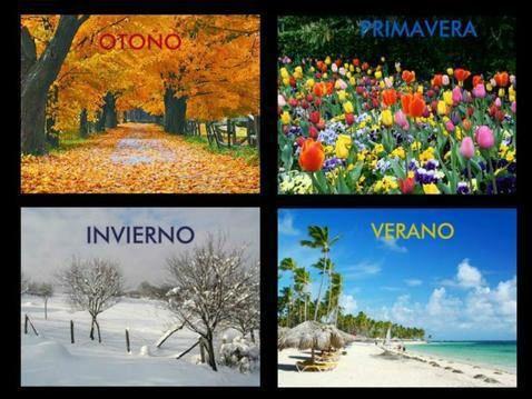 Las estaciones del año: Las cuatro estaciones del año.
