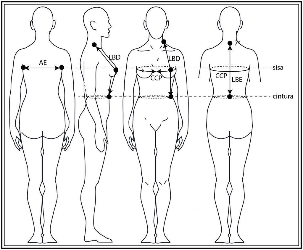 Patrón base del cuerpo femenino desde el contorno de pecho 81 a 117 ...