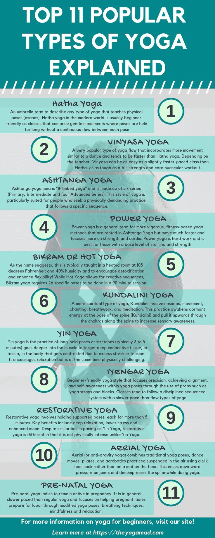 Top 11 Popular Types of Yoga Explained. Which Should You Do?   The YogaMad