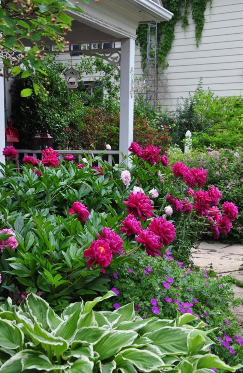 Gardens Photo Pinterest Gardens Garden ideas and Backyard