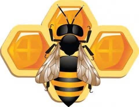 Dibujo De Color Para Imprimir Animales Insectos Abeja Numero 699001 Cartoon Bee Bee Vector Free