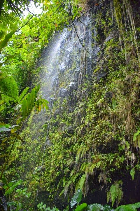 Incredible waterfalls are a feature of Papeete, Tahiti.