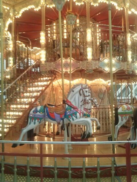 Beautiful Carousel In The Lynnhaven Mall Virginia Beach My Girls Rode This Many Times Aww How I Miss It Virginia Beach Virginia Hampton Roads