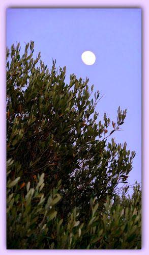 la luna di Allau