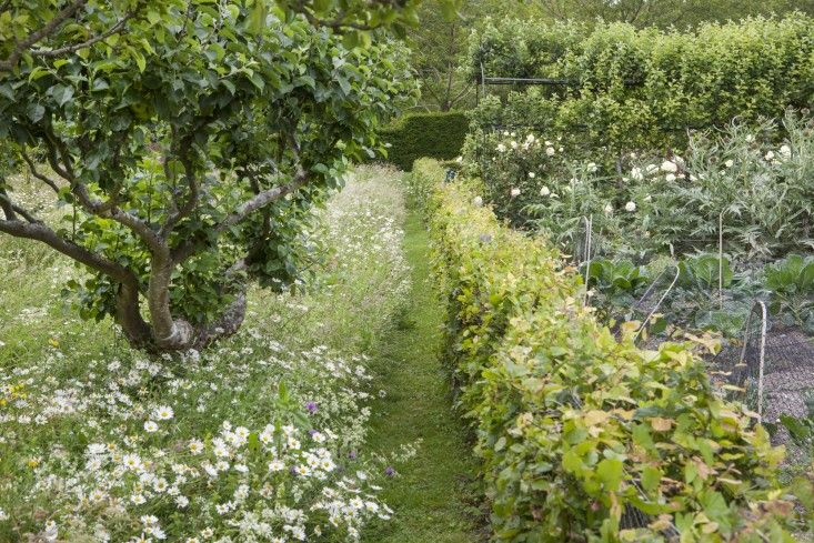 Orchard with wildflower meadow runs alongside a vegetable at Glyndebourne in Sussex.  All this and opera too!