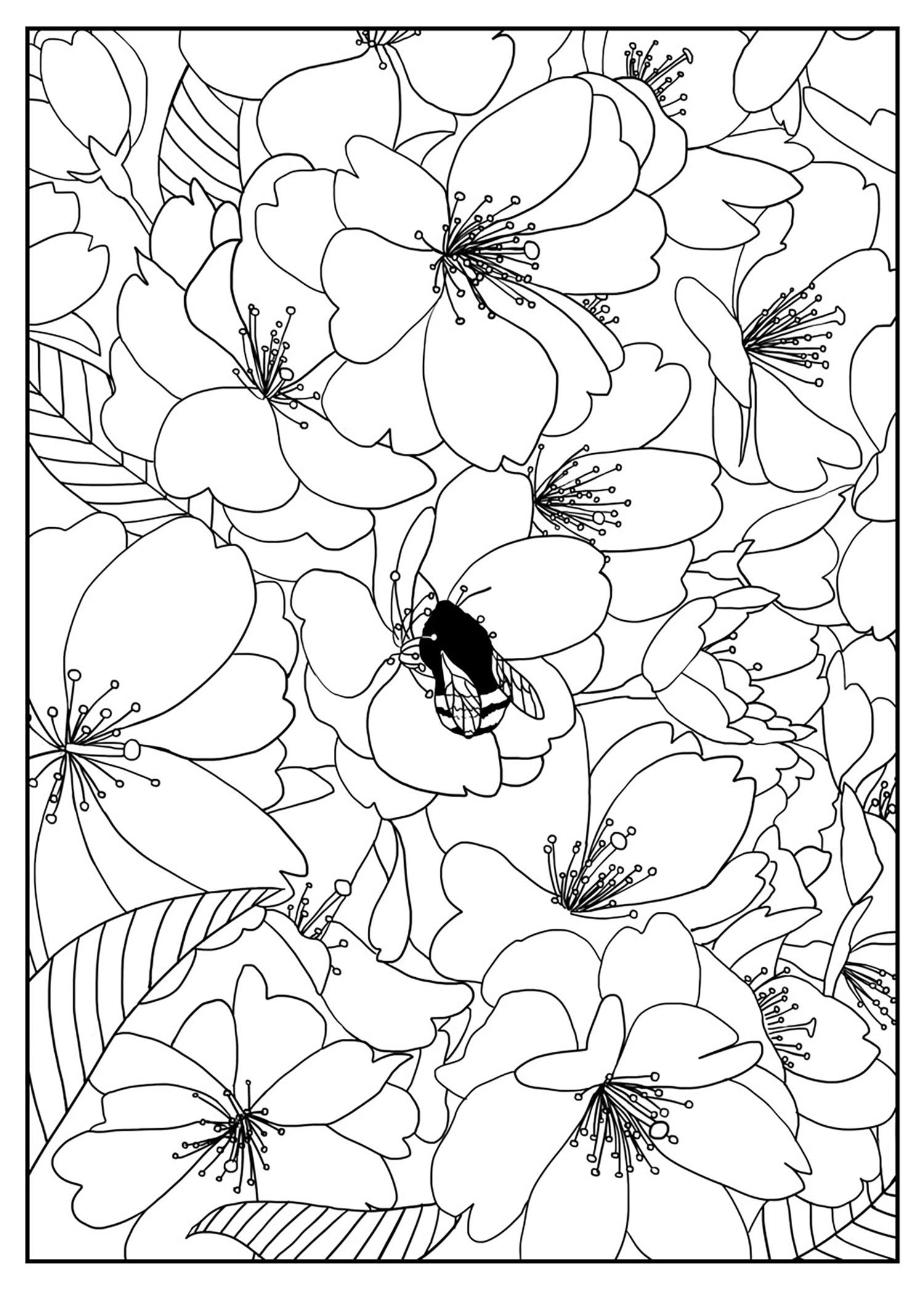 Free Coloring Page Coloring Adult Cherry Tree By Mizu Cherry Tree - coloring pages flowers and trees