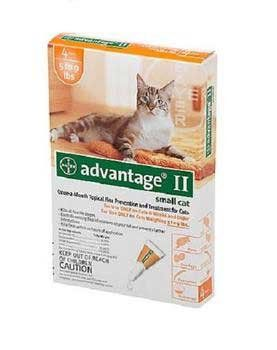 Advantage Ii Orange Cat Small 4pk See This Great Product This Is An Affiliate Link Catfleaandtickcontrol Flea Control For Cats Fleas Cat Fleas