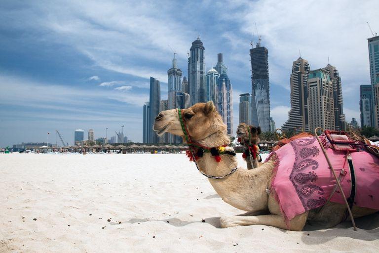 L'architettura della città di Dubai è una fusione tra passato e presente.