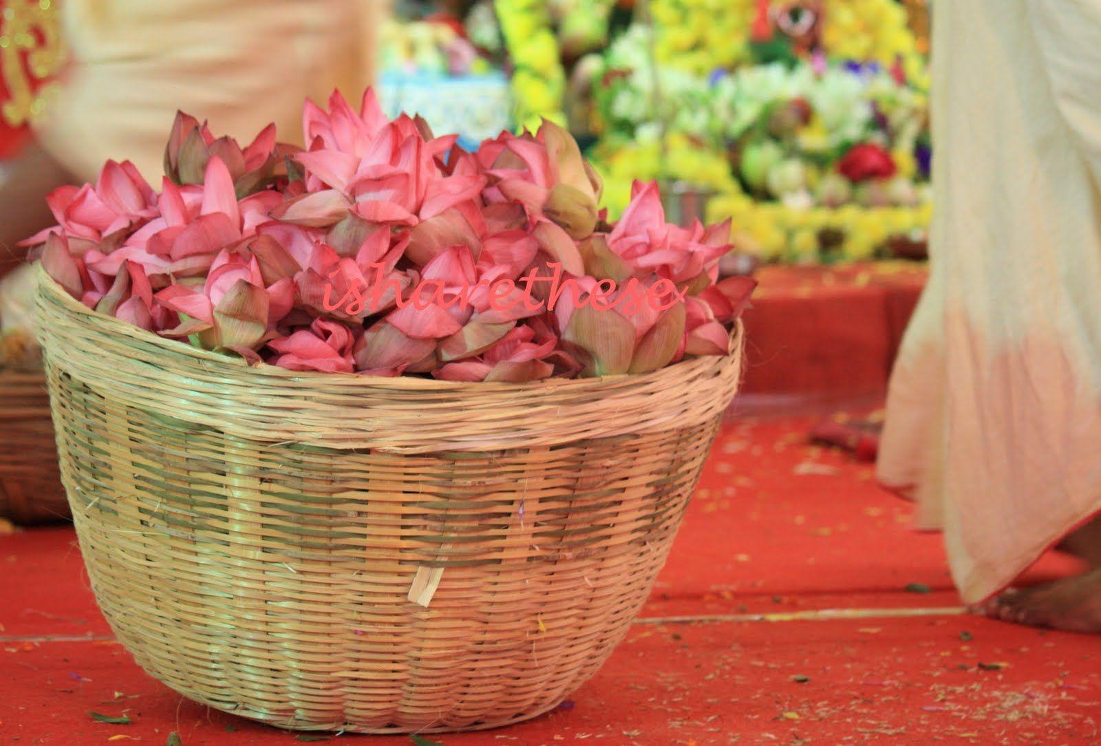 Pin By Sreedevi Balaji On Hindu Holy Plants Pinterest Plants