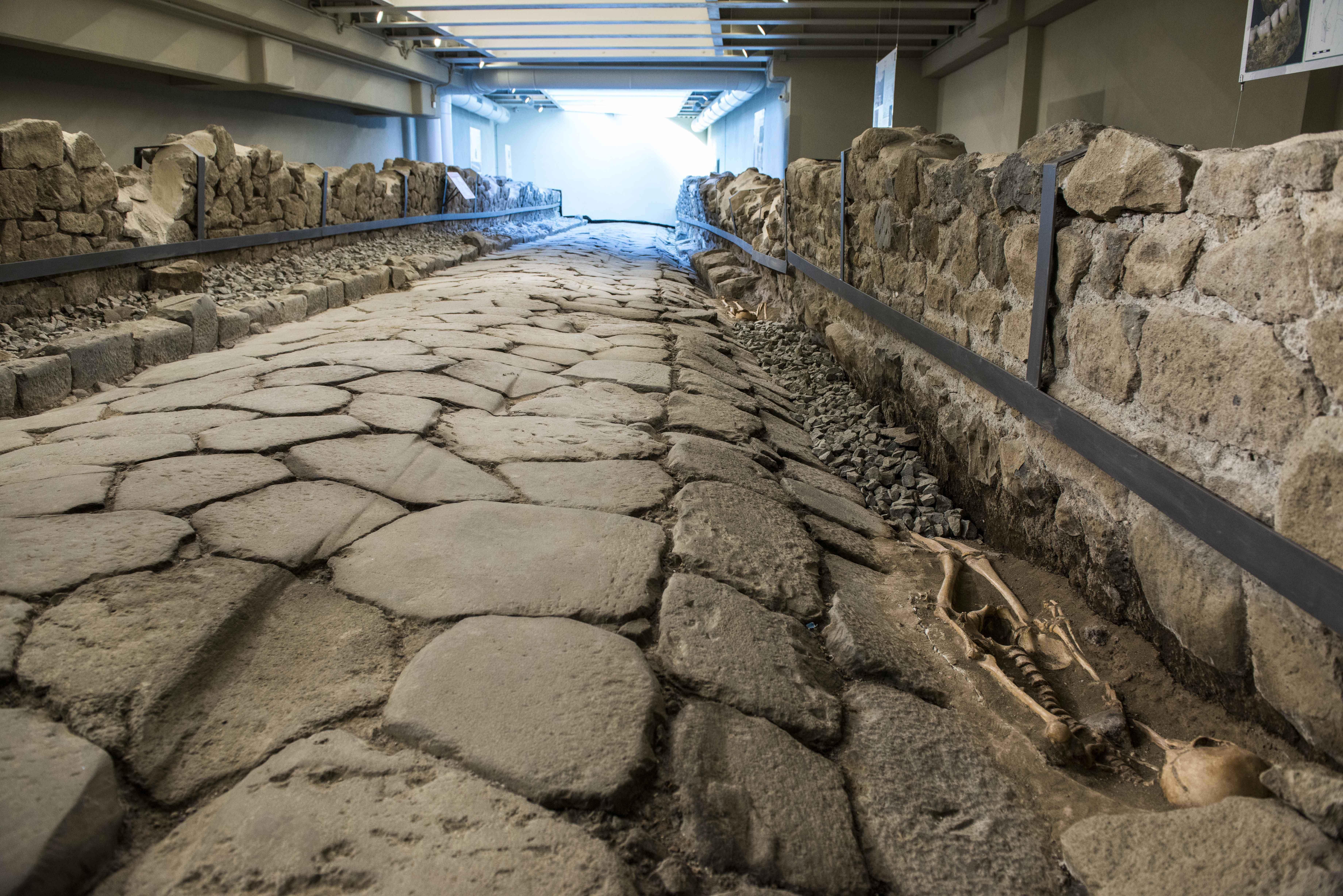 Road With Cast Of Skeleton In Situ